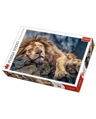 1000 Elementów Śpiący lew