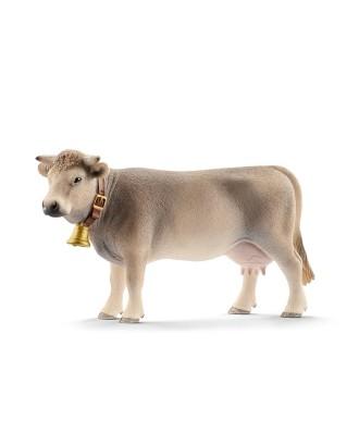Braunvieh veislės karvė