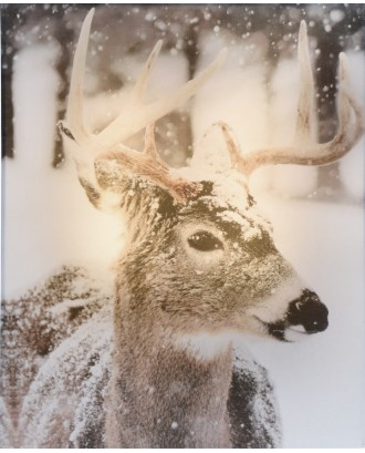 Elniai žiemos dekoracija 20x25cm LED